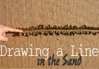 Drawing a Line in the Sand - Ki Tisa