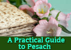 A Practical Guide to Pesach