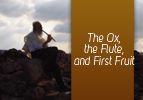 The Ox, the Flute, and First Fruit