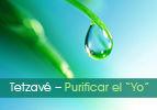 "Tetzave - Purificar el ""Yo"""