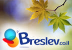 Breslov The Way It Is