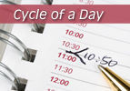 Cycle of a Day