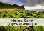 Нетив Хаим (Путь Жизни)-8