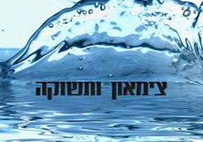 פרשת השבוע ויחי - צימאון ותשוקה