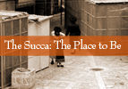 The Succa: The Place to Be