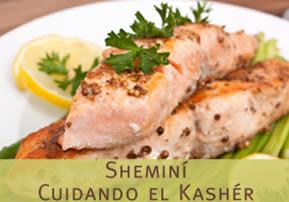 Cuidando el Kashér  –  Sheminí