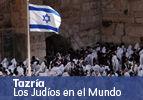 Tazría – Los Judíos en el Mundo