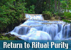 Return to Ritual Purity
