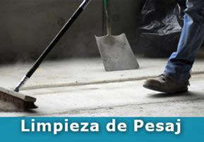 Limpieza de Pesaj