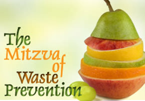 The Mitzva of Waste Prevention