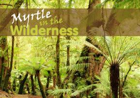 Myrtle in the Wilderness