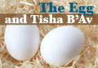 The Egg and Tisha B'Av