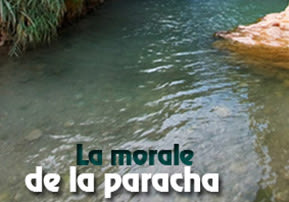 La morale de la paracha - Vayélekh