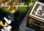 Why Tefillin?