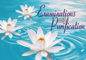 Examinations and Purification