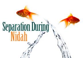 Separation During Nidah