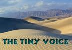 The Tiny Voice