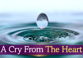 A Cry From The Heart