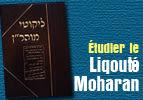 Étudier le Liqouté Moharan