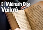 El Midrash Dice - Vaikrá
