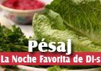 Pesaj - La Noche Favorita de Dios