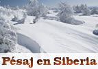 Pésaj en Siberia