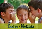 Parashá Tazria-Metzora