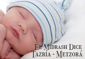El Midrash Dice Tazría - Metzorá