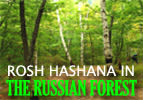 Rosh Hashana In The Russian Forest
