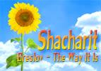 Shacharit - Part 3