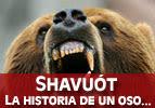 Shavuot - La Historia de un Oso