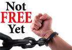 Emor: Not Free Yet