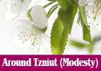 All Around Tzniut (Modesty)