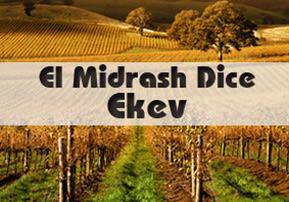 El Midrash Dice -  Ekev