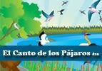 El Canto de los Pájaros #10