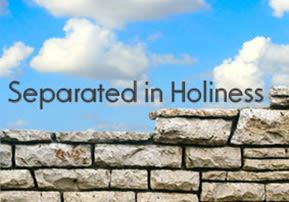 Nitzavim: Separated in Holiness