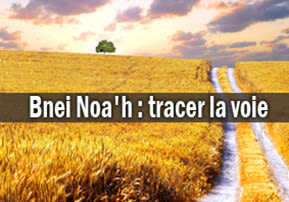 Bnei Noa'h : tracer la voie