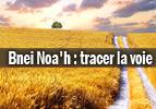 Bnei Noa