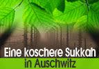 Eine koschere Sukka in Auschwitz