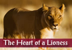 Vayeshev: The Heart of a Lioness