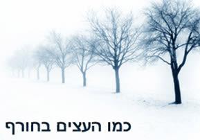 כמו העצים בחורף