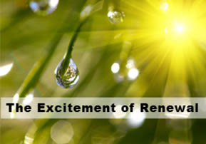 The Excitement of Renewal