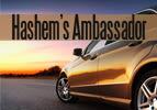 Tetzaveh: Hashem's Ambassador