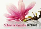 Sobre la Parashá - Tetzave