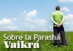 Sobre la Parashá - Vaikra