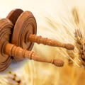 Comment etudier la Torah ?