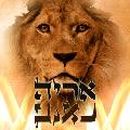 עין האריה