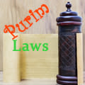 "Laws of ""Megila"" and more Purim laws."