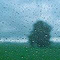 Immer wenn es regnet