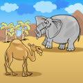 הפיל והגמל